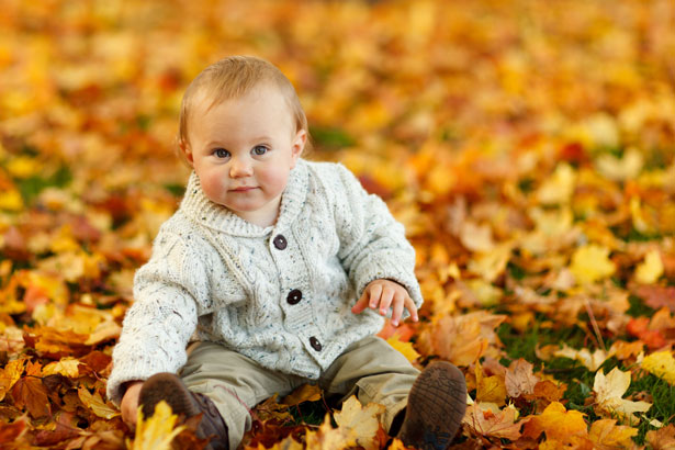 boy in park in autumn - Toddlebabes