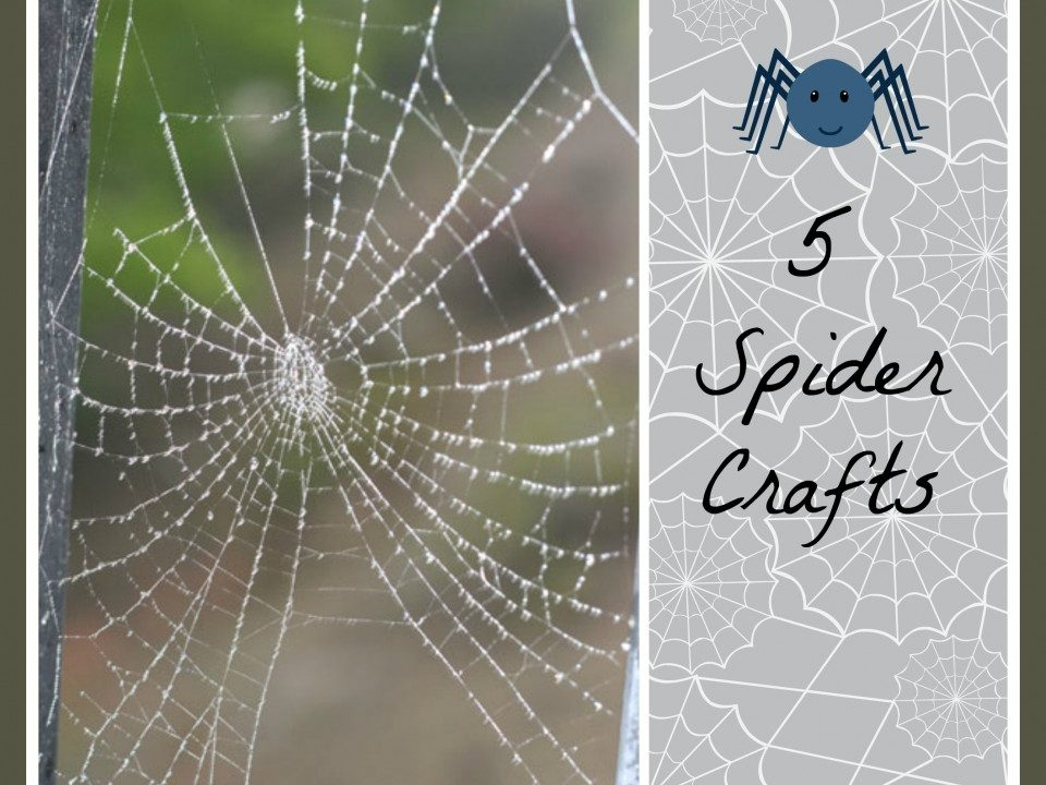 spidercraft - Toddlebabes