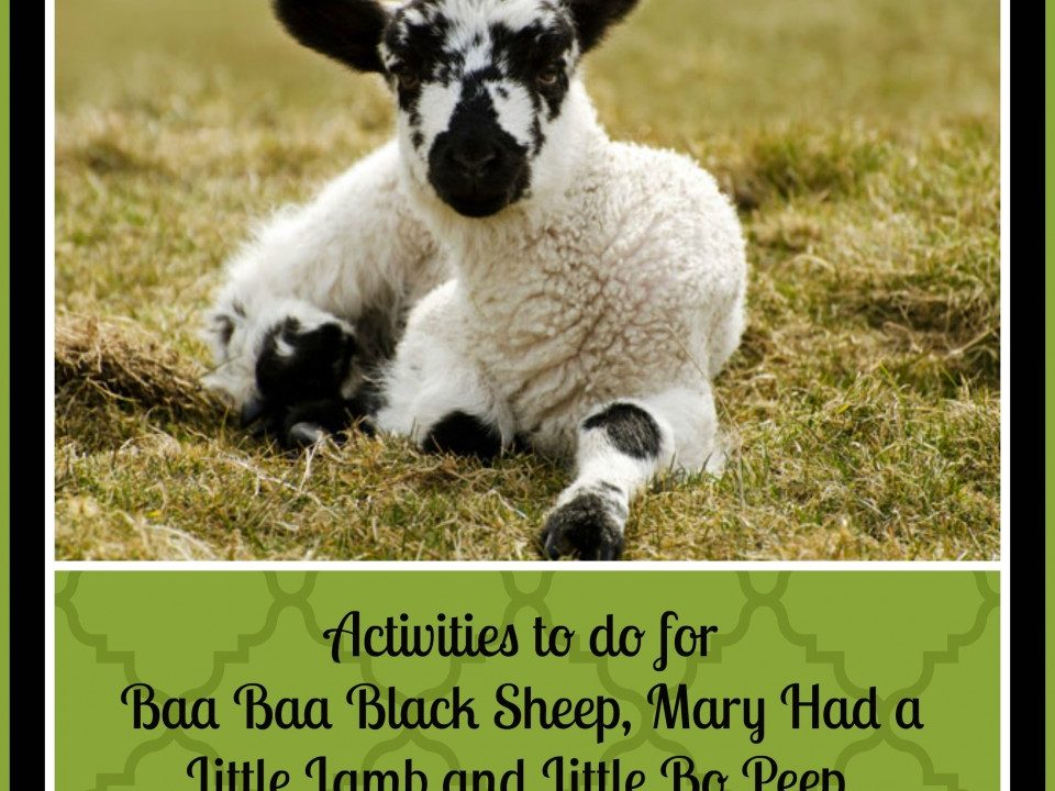10 Sheep activities for kids, baa baa black sheep, mary had a little lamb, little bo peep, spring lambs, sheep