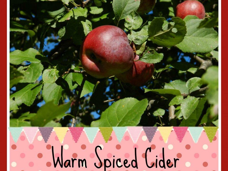 Warm Spiced Cider, cider recipe, apple recipes