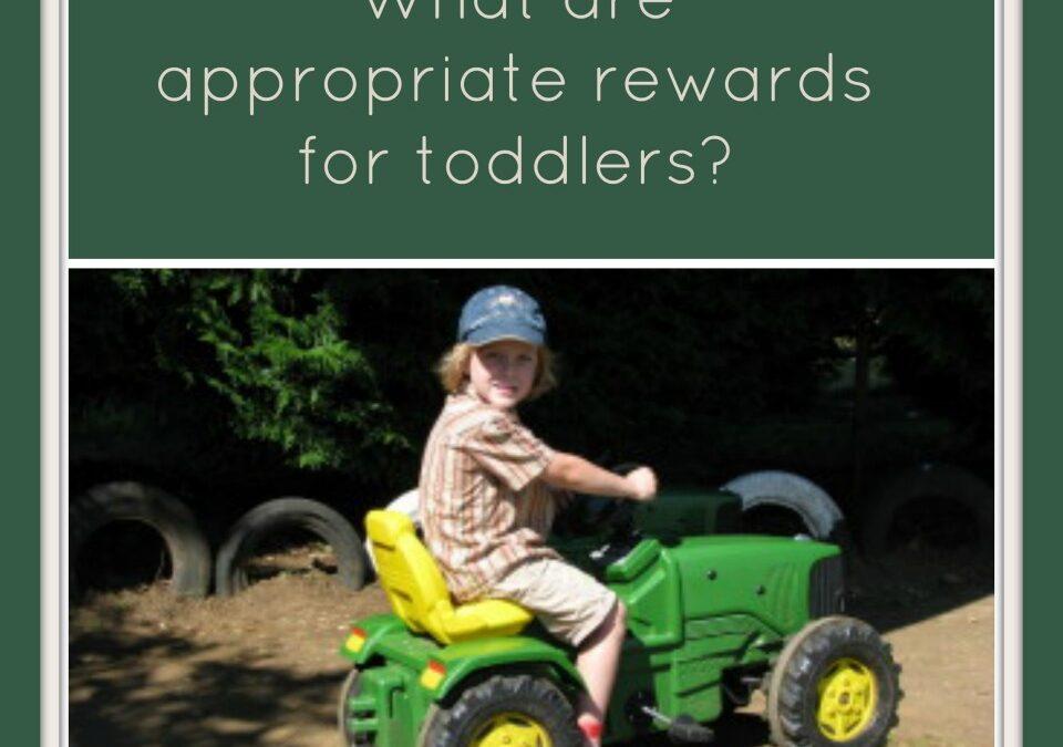 what are Appropriate rewards for toddlers? behaviour management, rewarding good behaviour
