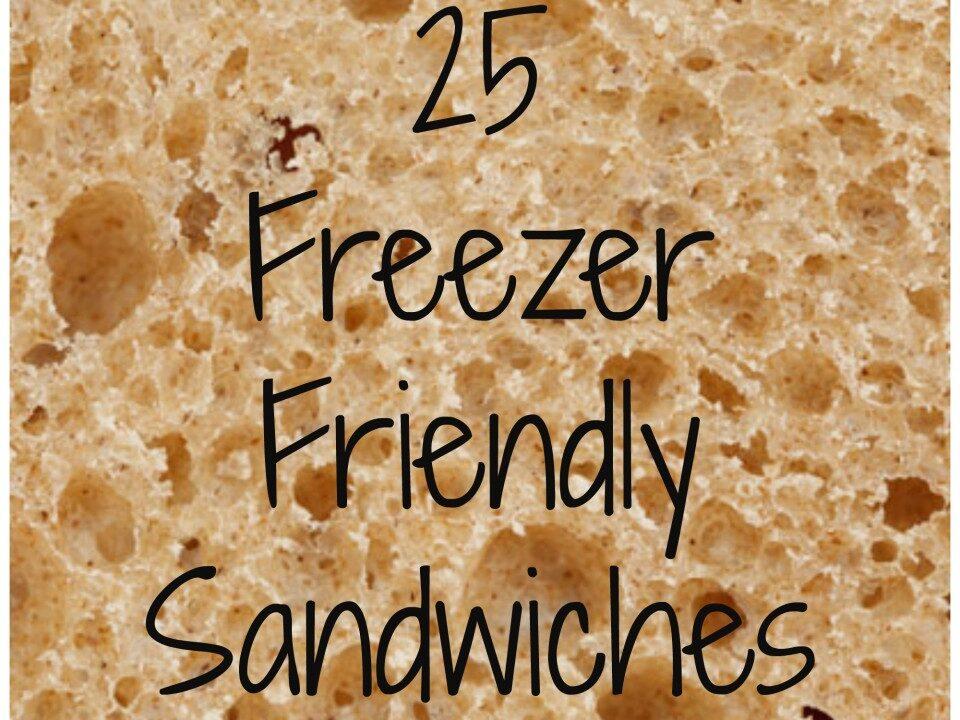 freezersandwich - Toddlebabes