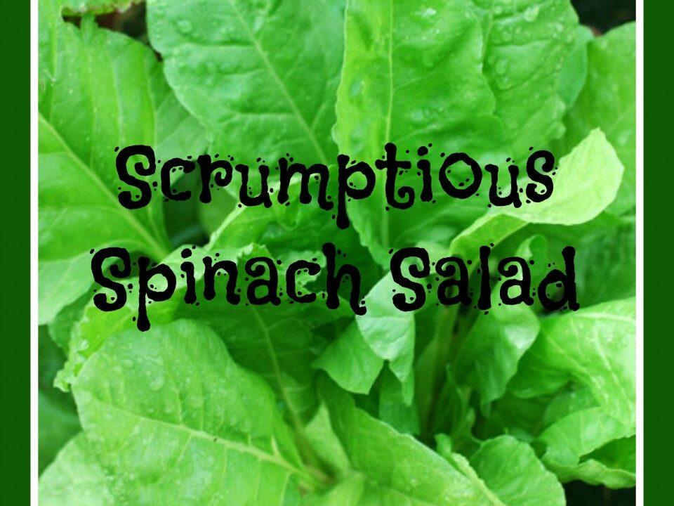 Scrumptious Spinach Sala, spinach recipe, salad recipe, clean living recipe