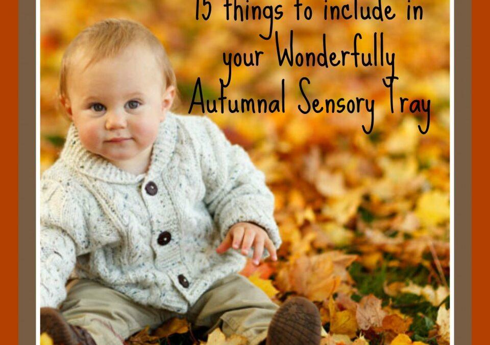 AUtumn activities, sensory trays, autumn kids crafts and ideas