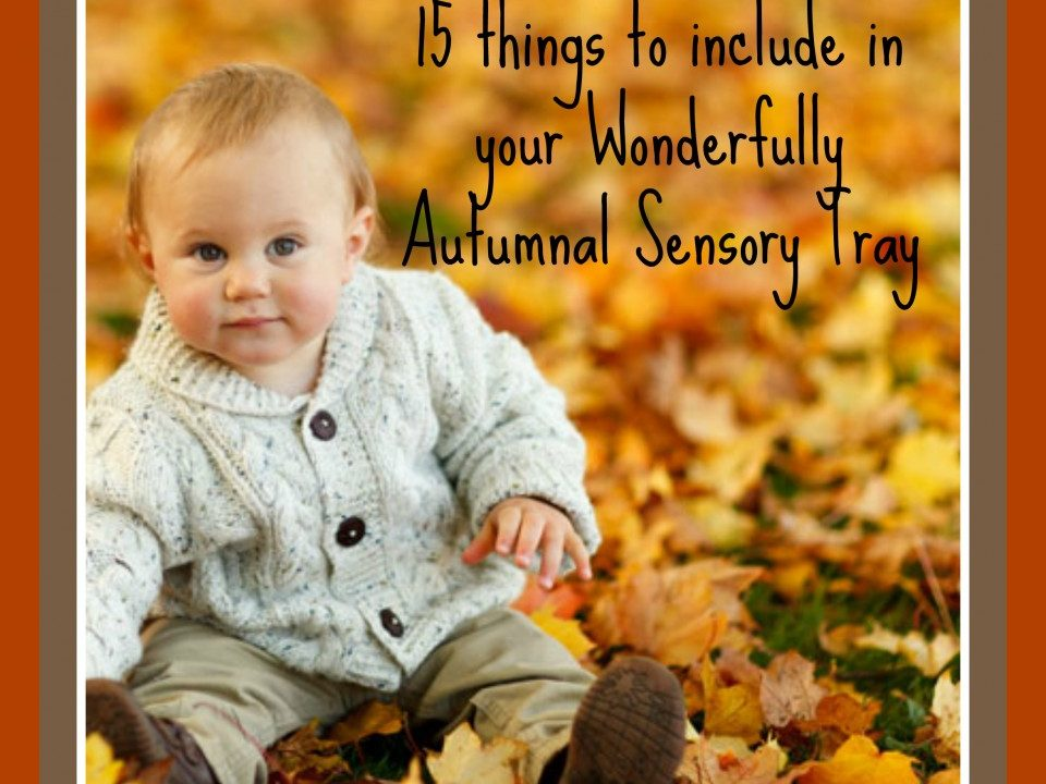 AUtumn activities, sensory trays, autumn kids crafts and ideas