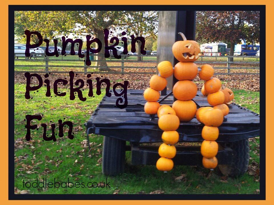 Pumpkin picking - Toddlebabes