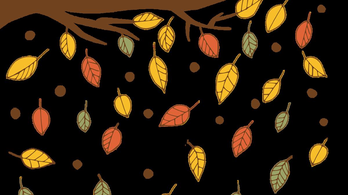 autumn, isolated, sheet