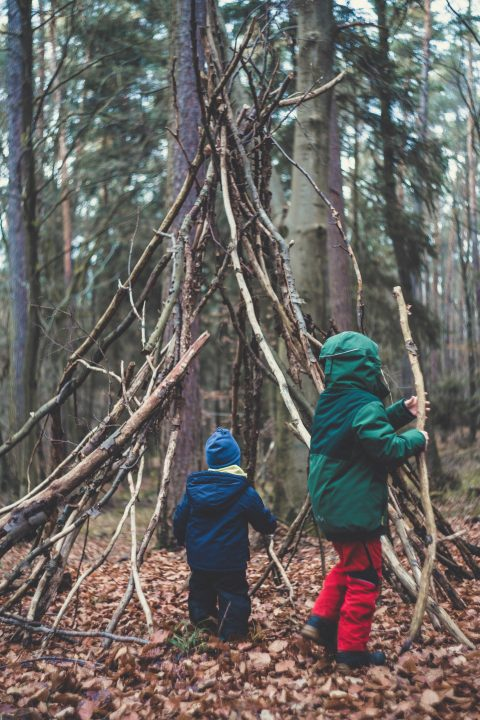 Markus Spiske 1S0 PHmQ TY Unsplash At Toddlebabes Learn To Play Play To Learn Den Building